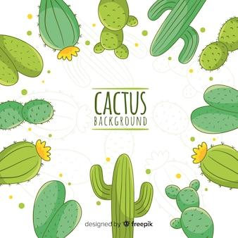 Fondo marco de cactus dibujado a mano
