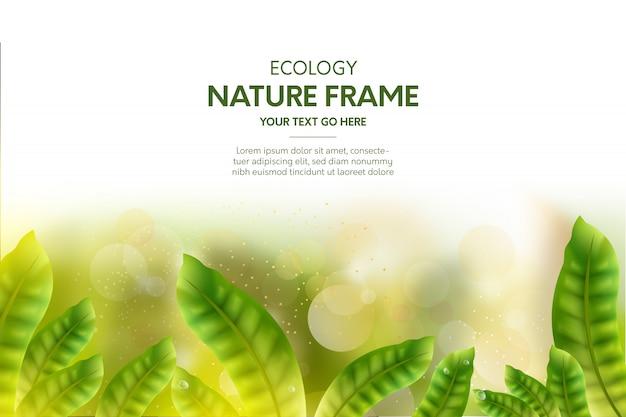 Fondo de marco de naturaleza con hojas realistas