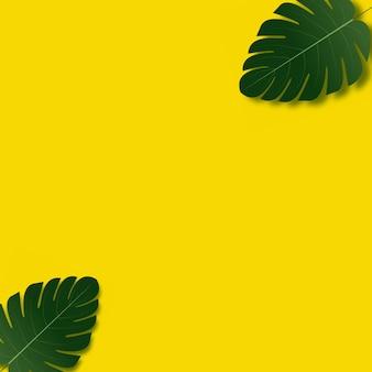 Fondo de marco de verano con hojas de palmera.