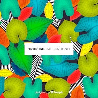 Fondo moderno de hojas tropicales