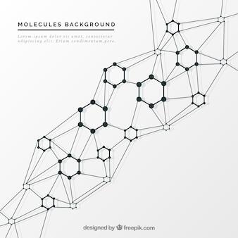 Fondo molecular elegante