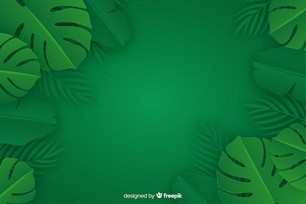 Fondo monocromo de hojas con planta monstera