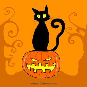 Fondo naranja con gato negro y calabaza