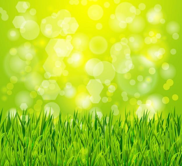 Fondo de naturaleza con hierba verde