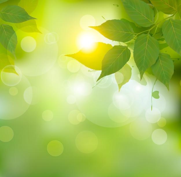 Fondo de naturaleza con hojas verdes de primavera.