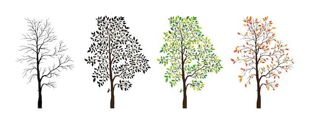 Fondo de naturaleza de temporadas de árbol. ilustración vectorial