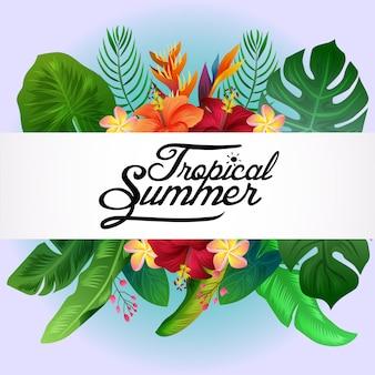 Fondo de naturaleza tropical de verano