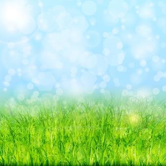Fondo de la naturaleza con el vector de la hierba verde y el cielo azul