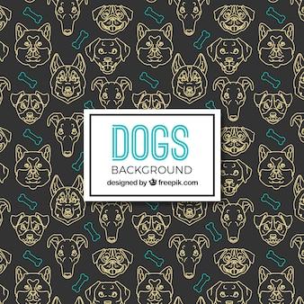 Fondo oscuro de perros