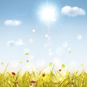 Fondo de otoño con hierba amarilla, setas, hojas, cielo, sol y nubes