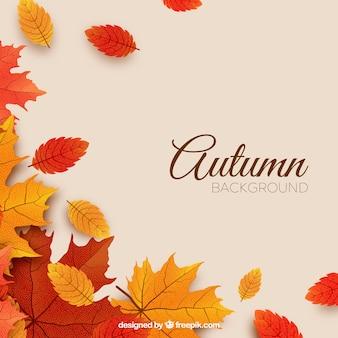 Fondo de otoño con