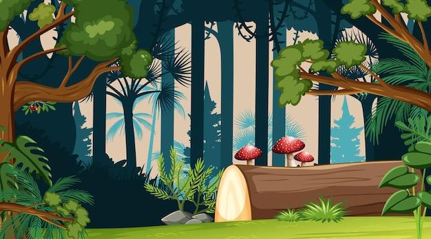 Fondo de paisaje de bosque de naturaleza