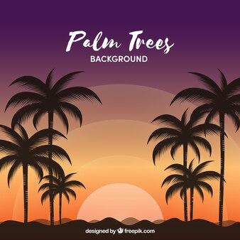Fondo de paisaje con palmeras