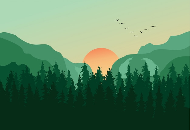 Fondo de paisaje de panorama de bosque de pino