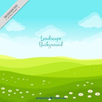 Fondo de paisaje con prado verde