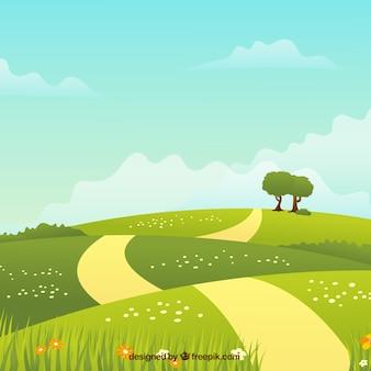 Fondo de paisaje de primavera  con camino