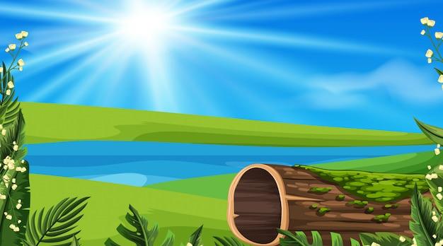 Fondo de paisaje del río al mediodía
