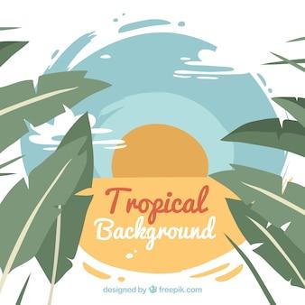 Fondo de paisaje tropical