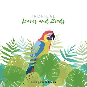 Fondo pájaro tropical