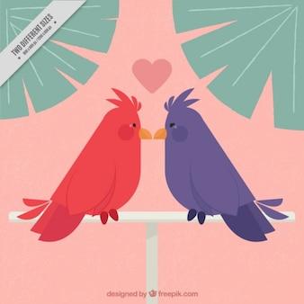 Fondo con pájaros amorosos coloridos