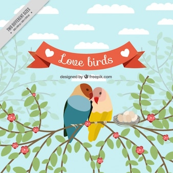 Fondo de pájaros amorosos en una rama