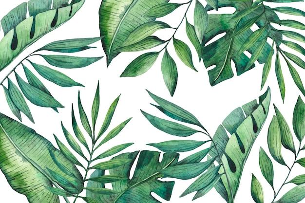 Fondo de pantalla de hojas tropicales
