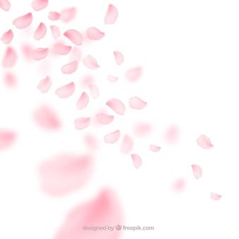 Fondo de pétalos de flor de cerezo en estilo degradado