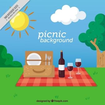 Fondo de picnic en un campo