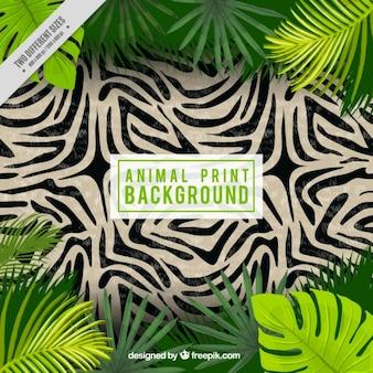 Fondo de piel de zebra con hojas de palmeras