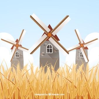 Fondo plano de trigo