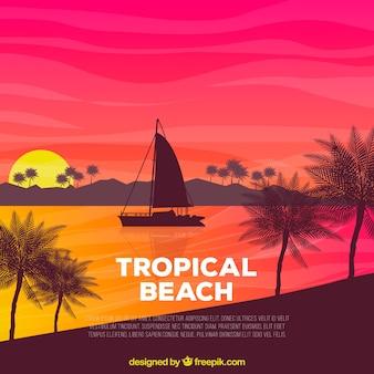 Fondo de playa tropical con atardecer