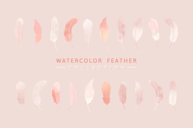 Fondo de plumas de color rosa