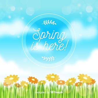 Fondo primavera cielo borroso
