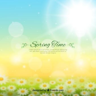 Fondo de primavera desenfocado
