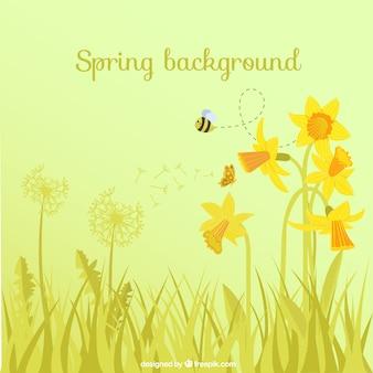 Fondo de primavera con flores y abeja