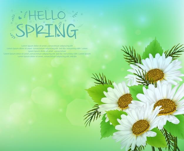 Fondo de primavera con flores de margarita