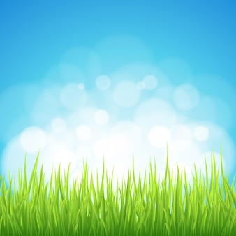 Fondo de primavera hierba verde bokeh