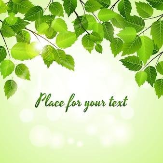 Fondo de primavera con hojas verdes vectoriales dispuestas como un borde superior sobre un brillante bokeh de luz solar con copyspace para el texto