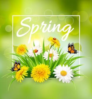 Fondo de primavera de naturaleza con césped, flores y mariposas. vector.