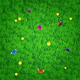Fondo de primavera de naturaleza con hierba, flores y mariposas