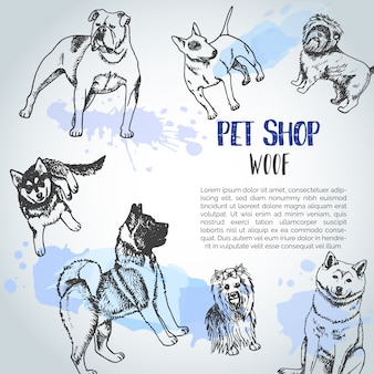 Fondo con razas de perros dibujados a mano.