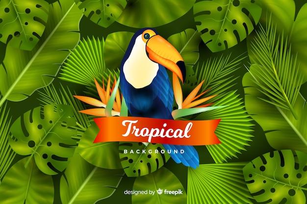 Fondo realista de pájaros y hojas tropicales