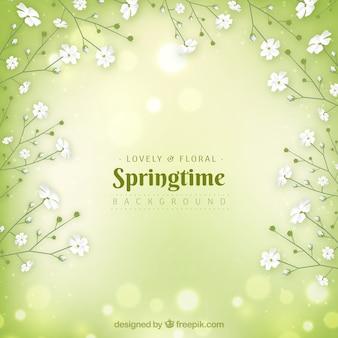 Fondo realista de primavera verde