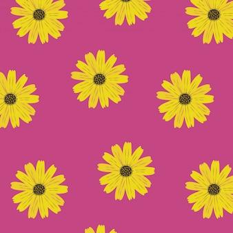 Fondo rosa con girasoles de verano.