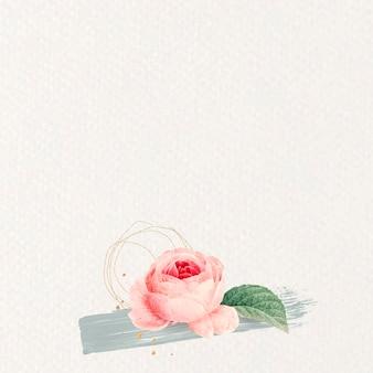 Fondo rosa rosa en blanco