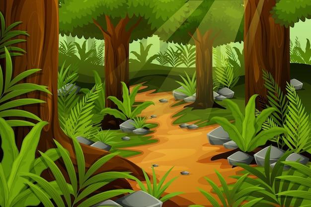 Fondo de selva detallada