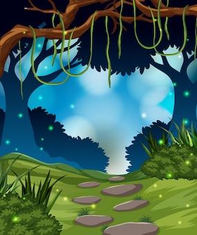 Un fondo de selva tropical