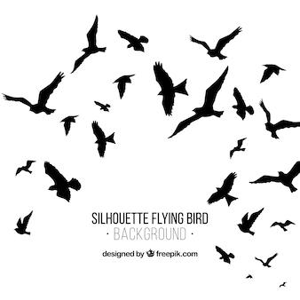 Fondo de silueta de pájaros volando