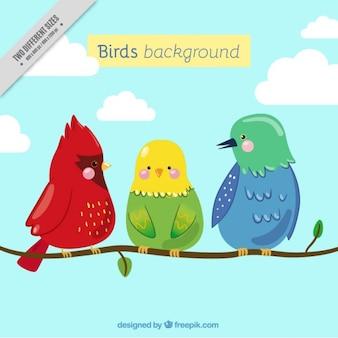 Fondo de simpáticos pájaros en una rama