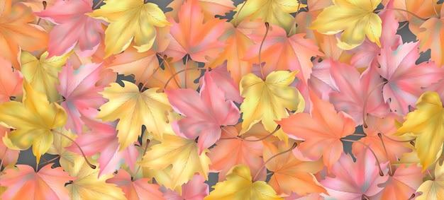 Fondo temático de otoño